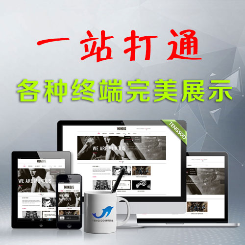 腾硕网络网站建设
